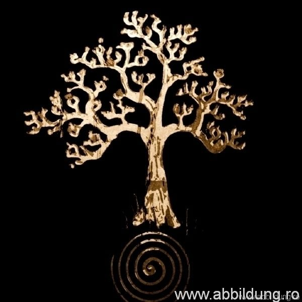 005 ABB ANT3